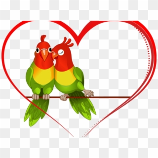 Free Love Birds Images PNG Images | Love Birds Images