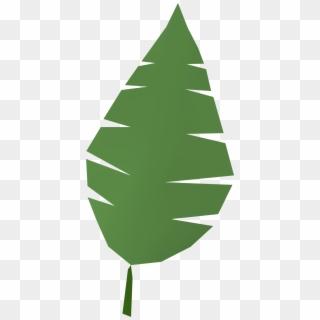 Free Palm Leaf PNG Images | Palm Leaf Transparent Background