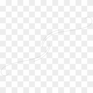 Free Swirl PNG Images | Swirl Transparent Background