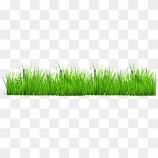 Free Grass PNG Images   Grass Transparent Background Download - PinPNG