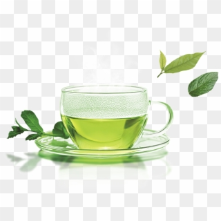 Free Green Tea Cup PNG Images | Green Tea Cup Transparent